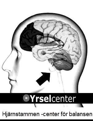 Hjärnans stam Yrselcenter