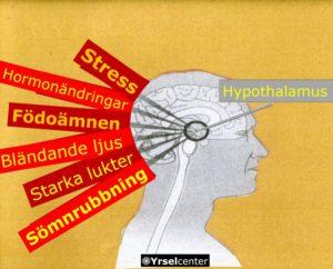 Kända triggers vid migrän