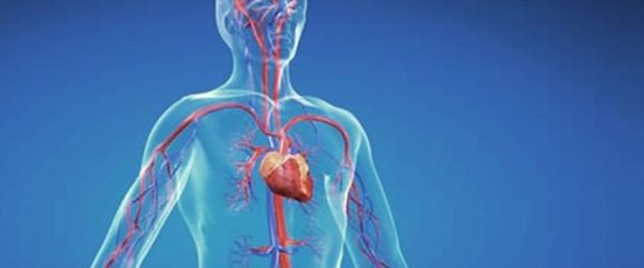 Hjärtrelaterad yrsel